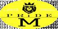 Логотип All Staff, кадровое агентство