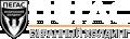 Логотип Пегас, охранный холдинг, ООО